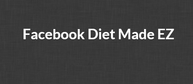 Ross Minchev and Brian Pfeiffer – Facebook Diet Made EZ Video Course Download