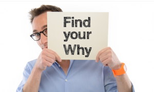 SimonSinek – Why Discovery Course Download